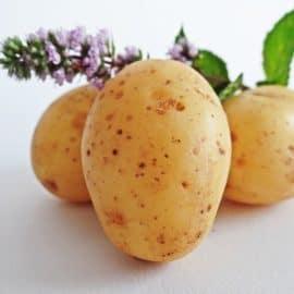 A heart shaped potatoe
