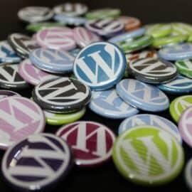 Search in Place – Das beste WordPress Such-Plugin